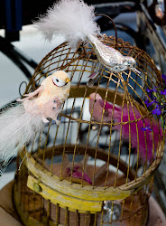 Rosa fugler i bur