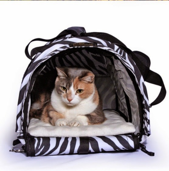 5 Ways To Keep Your Cat Calm During Travel