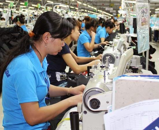 240 doanh nghiệp bị thiệt hại đã được hoàn thuế GTGT