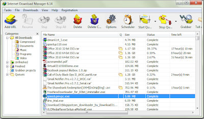 Internet Download Manager 6.15 Build 9 Screenshot
