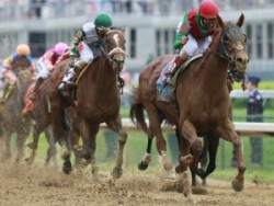 Down To The Wire, Springfield Saves Horse Racing