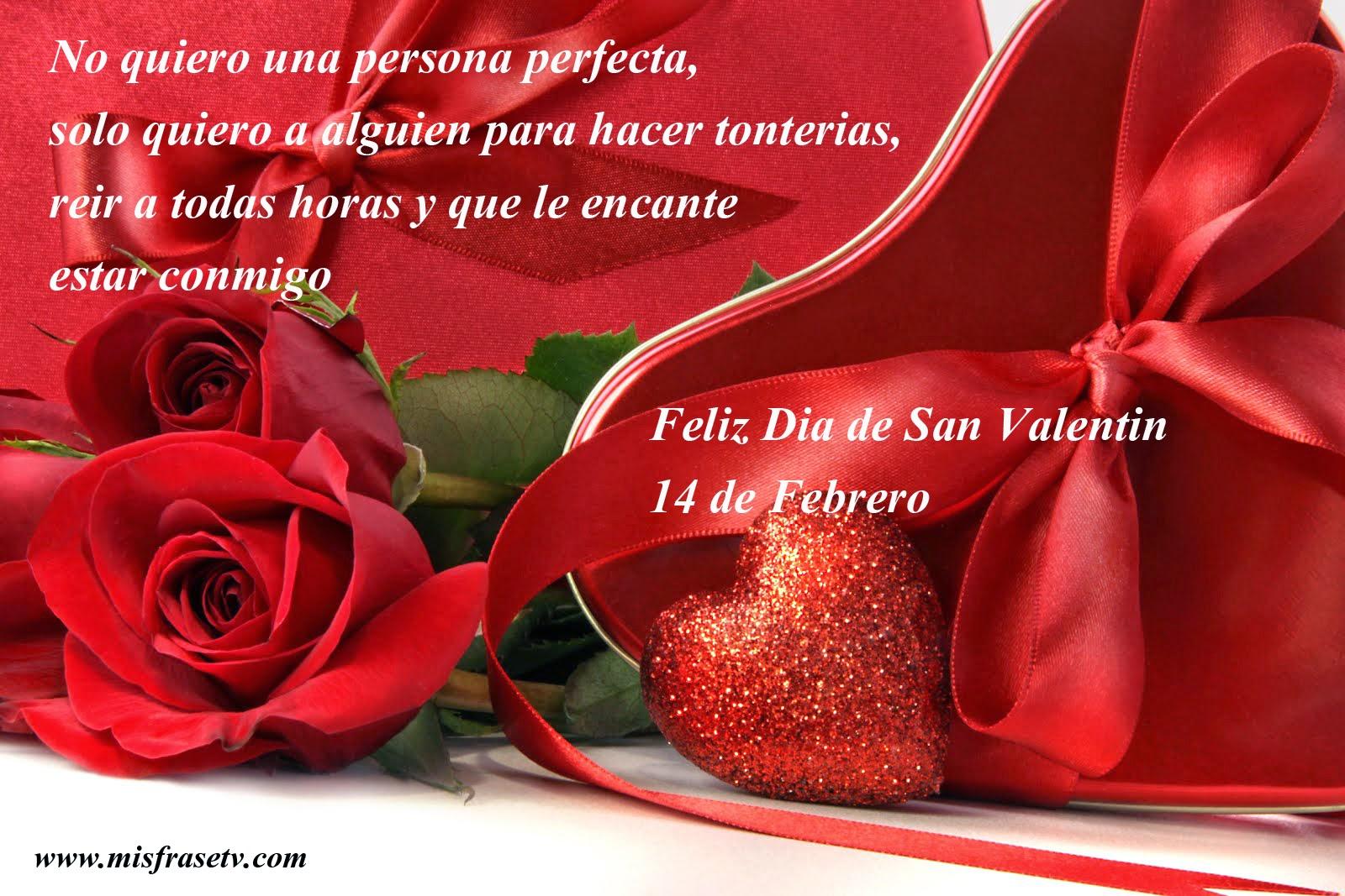 Frases De San Valentín: No Quiero Una Persona Perfecta
