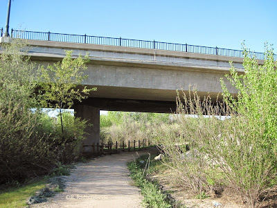 Salinas River Trail Leads Under the Veterans' Memorial Bridge, © B. Radisavljevic