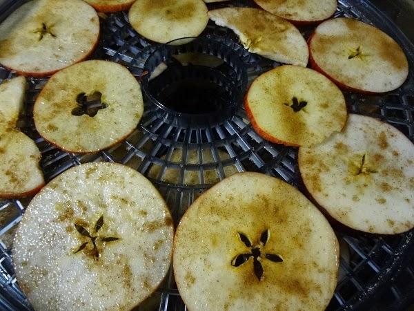Yummy Apple Chips Recipe http://www.niftynnifer.com/2014/12/yummy-apple-chips-recipe.html #Apples #Recipes #Chips