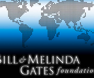 Bill gates foundation