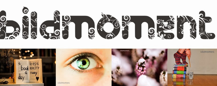 http://www.bildmoment.blogspot.se/