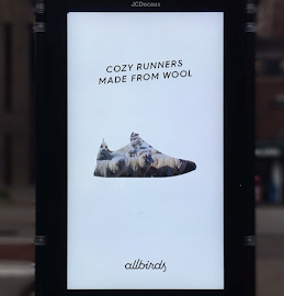 allbirds lambswool shoes bus poster video of sheep walking inside shoe shape