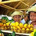 PHOTOS: Ligao City Sunflower Festival Farmers' Day