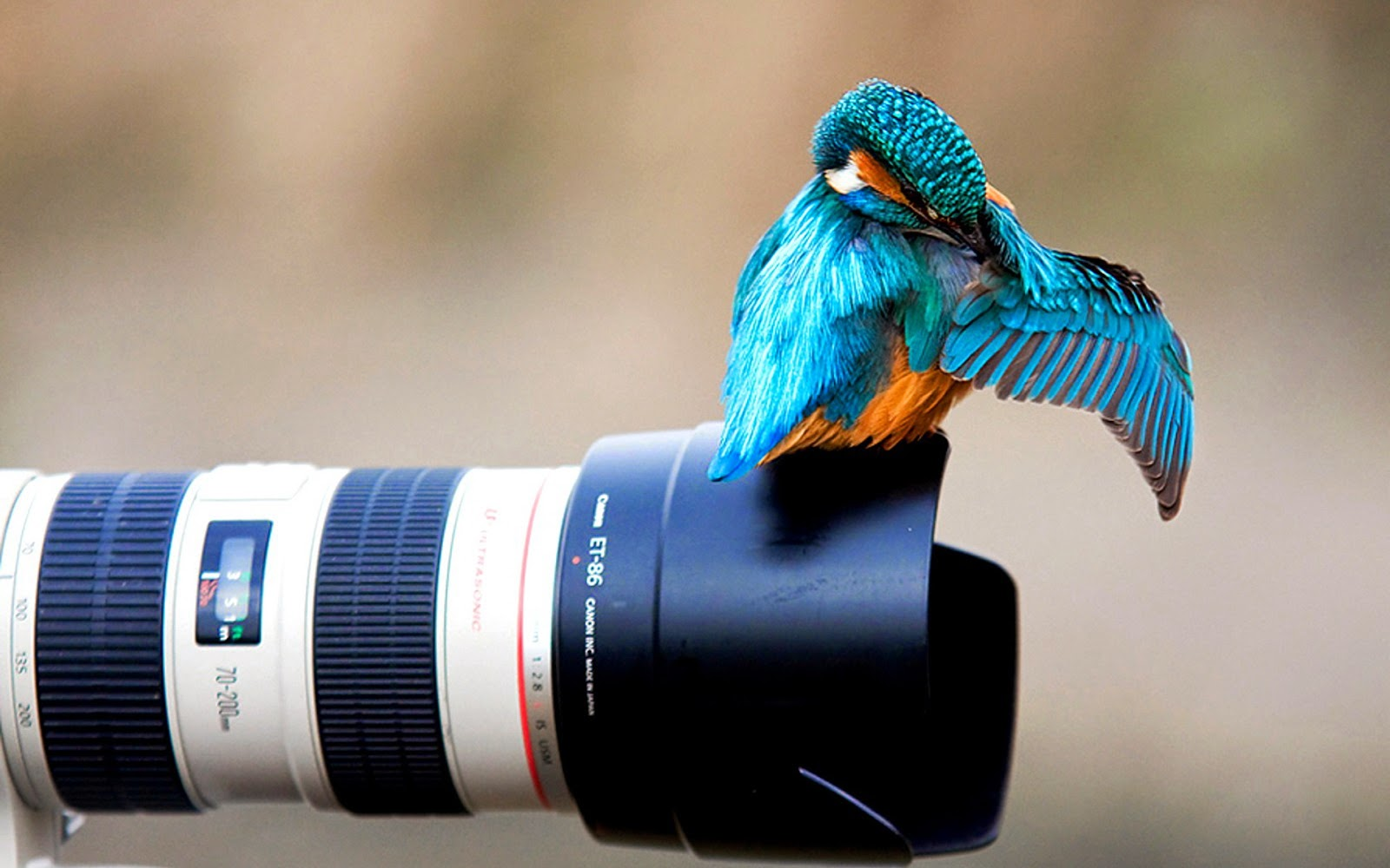 Creative Photography HD Wallpapers | Whatsapp Status ...