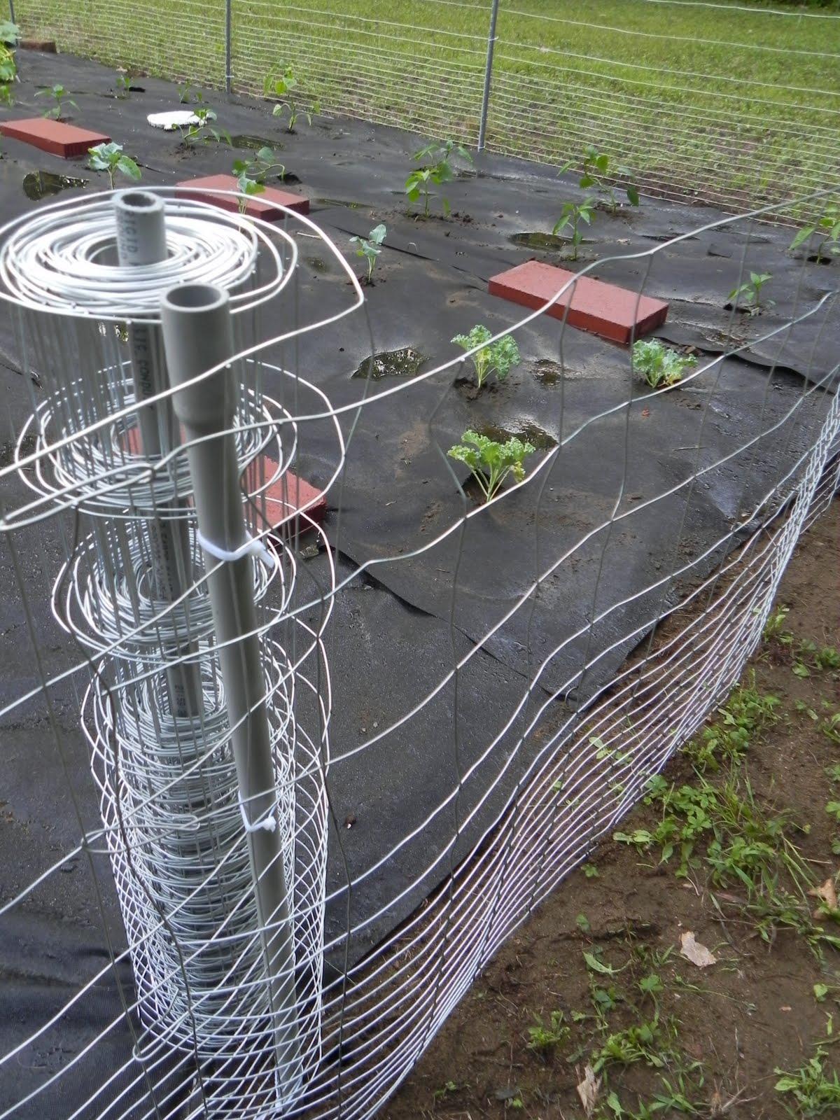 Diy garden fencing the adirondack chick