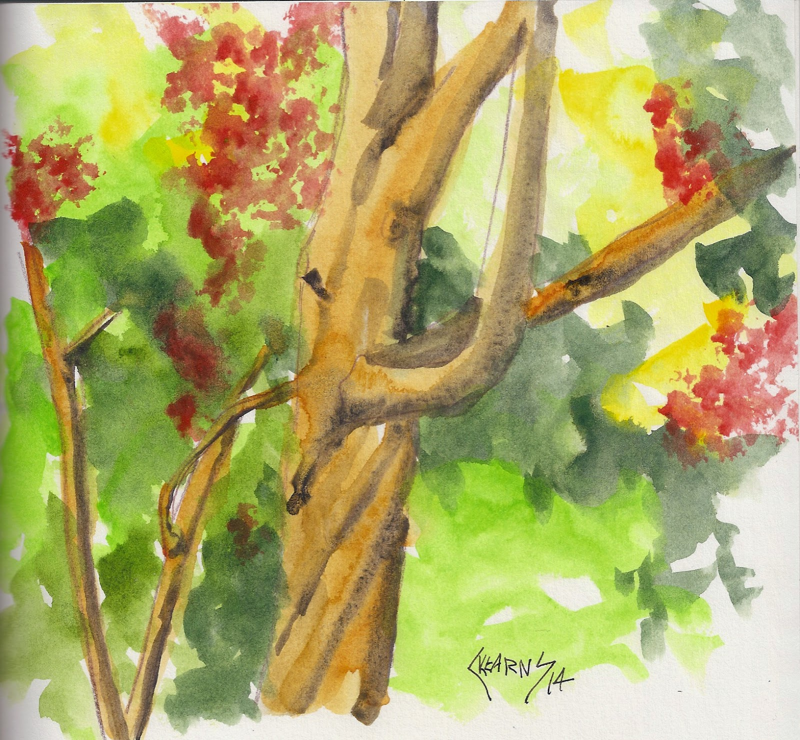 Unfettered: Backyard Tree -- Drawing with a Watercolor Pencil