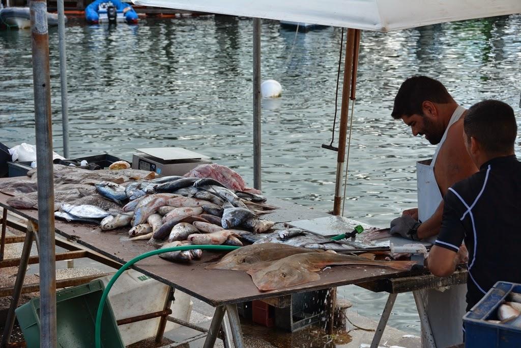 Puerto Nuestra Senora de la Candelaria fish