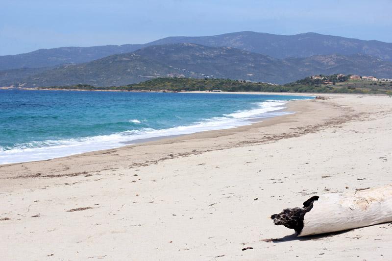 plage déserte sable fin corse été paradis