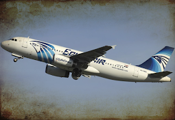 Contradictions of EGYPTAIR MS804