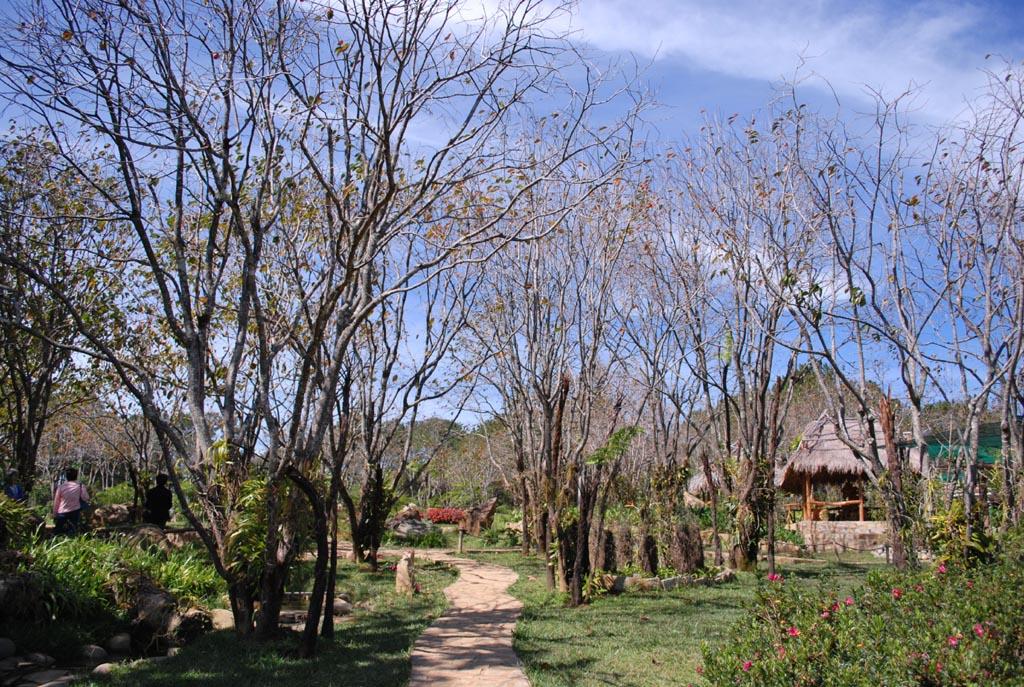 Tham quan khu du lịch Thung lũng vàng ở Đà Lạt