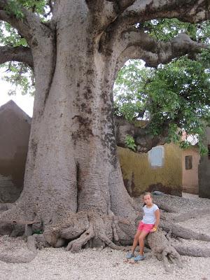 Baobab sagrado de Fadiouth