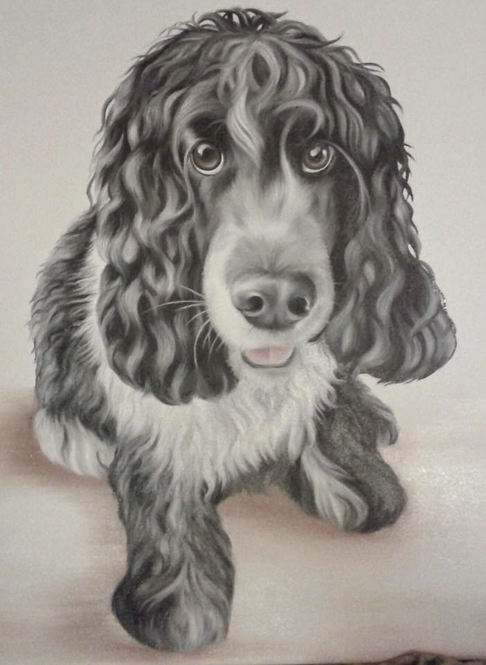 Pet Portrait Cocker Spaniel Oil on Canvas