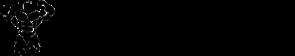 Treino de Maromba