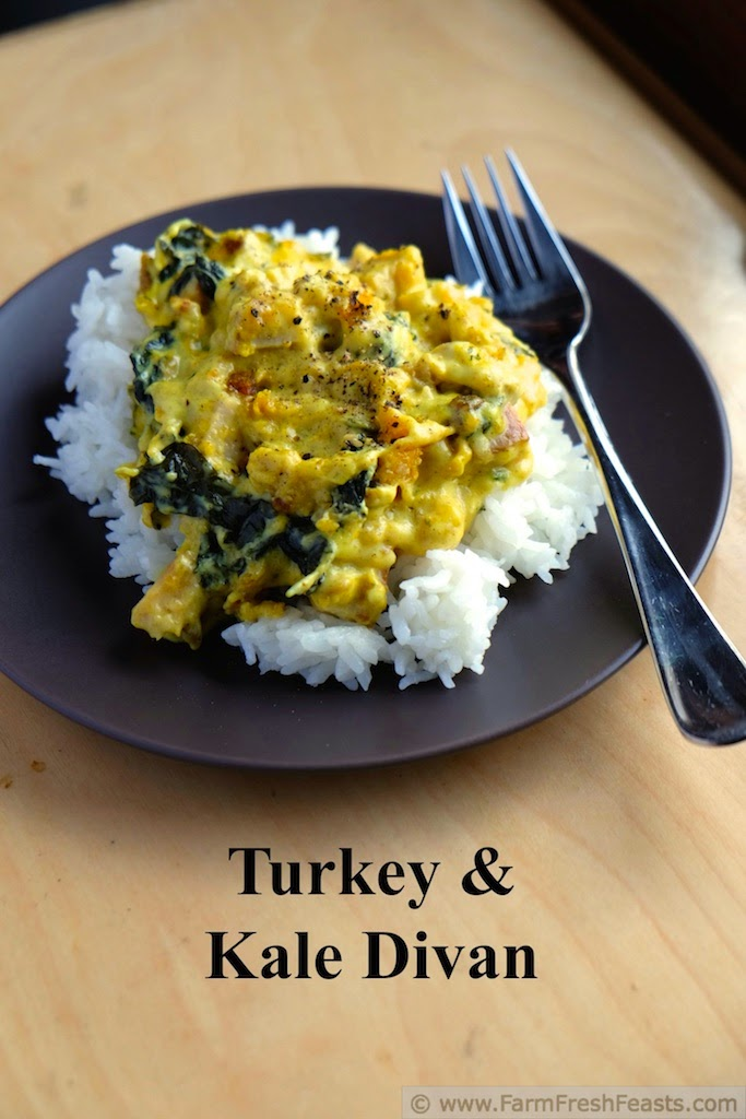 Farm fresh feasts turkey and kale divan for Divan turkish