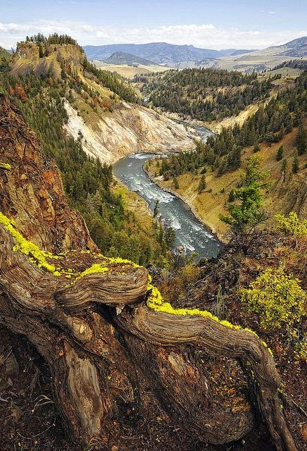 Yellowstone National Park, Wyoming, United States