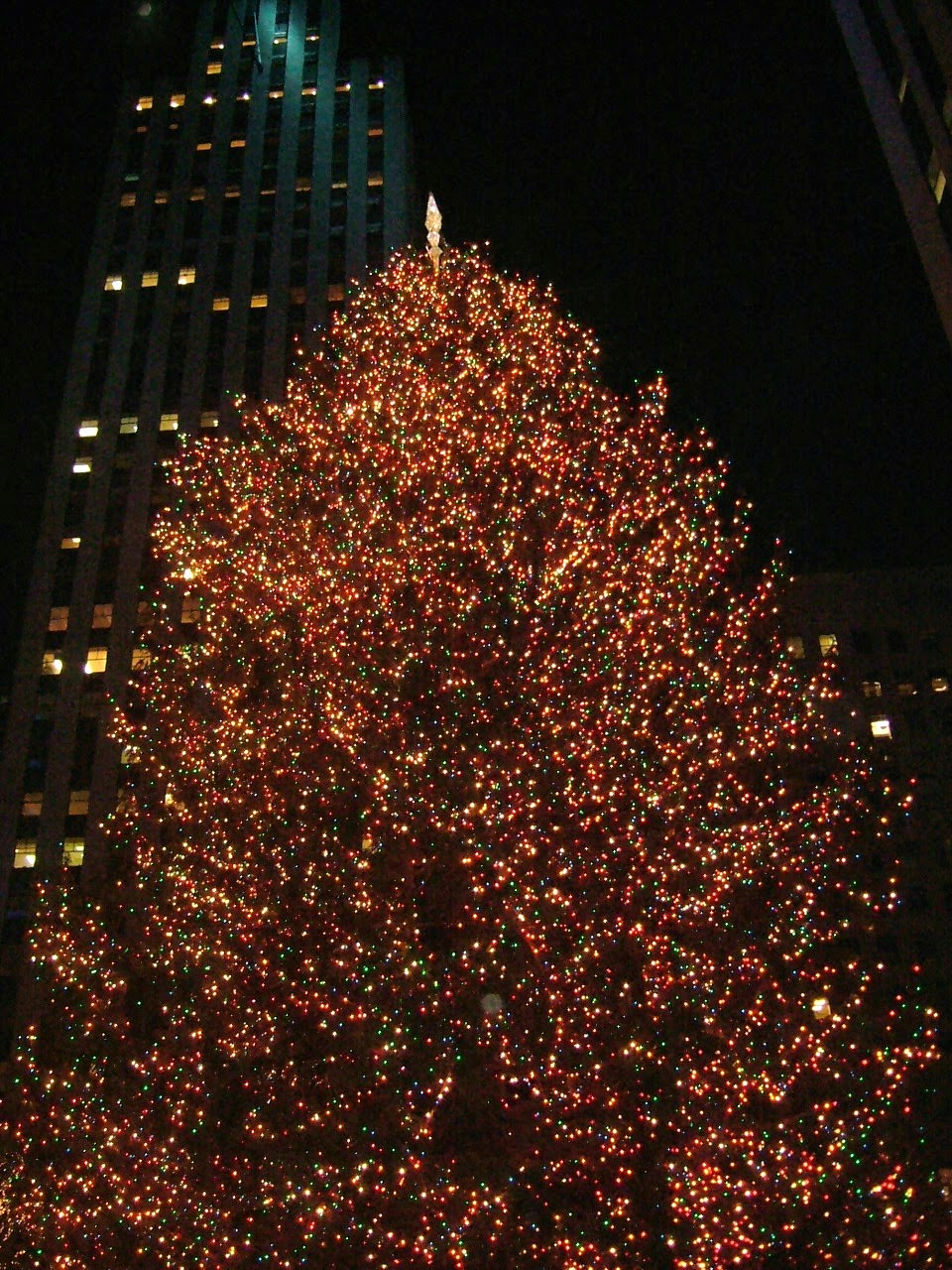 Wedding Planning In New York New York the Christmas tree at the Rockafella Centre