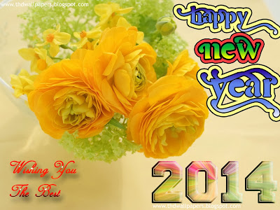 Beautiful Happy New Year 2014 eCards Images