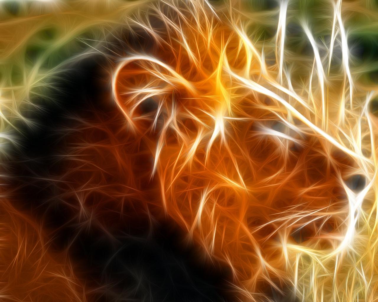 http://1.bp.blogspot.com/-rU46mJd3mGA/T7z-xrAjteI/AAAAAAAACoA/GC_wlgSdLUE/s1600/lion-wallpaper-1.jpg