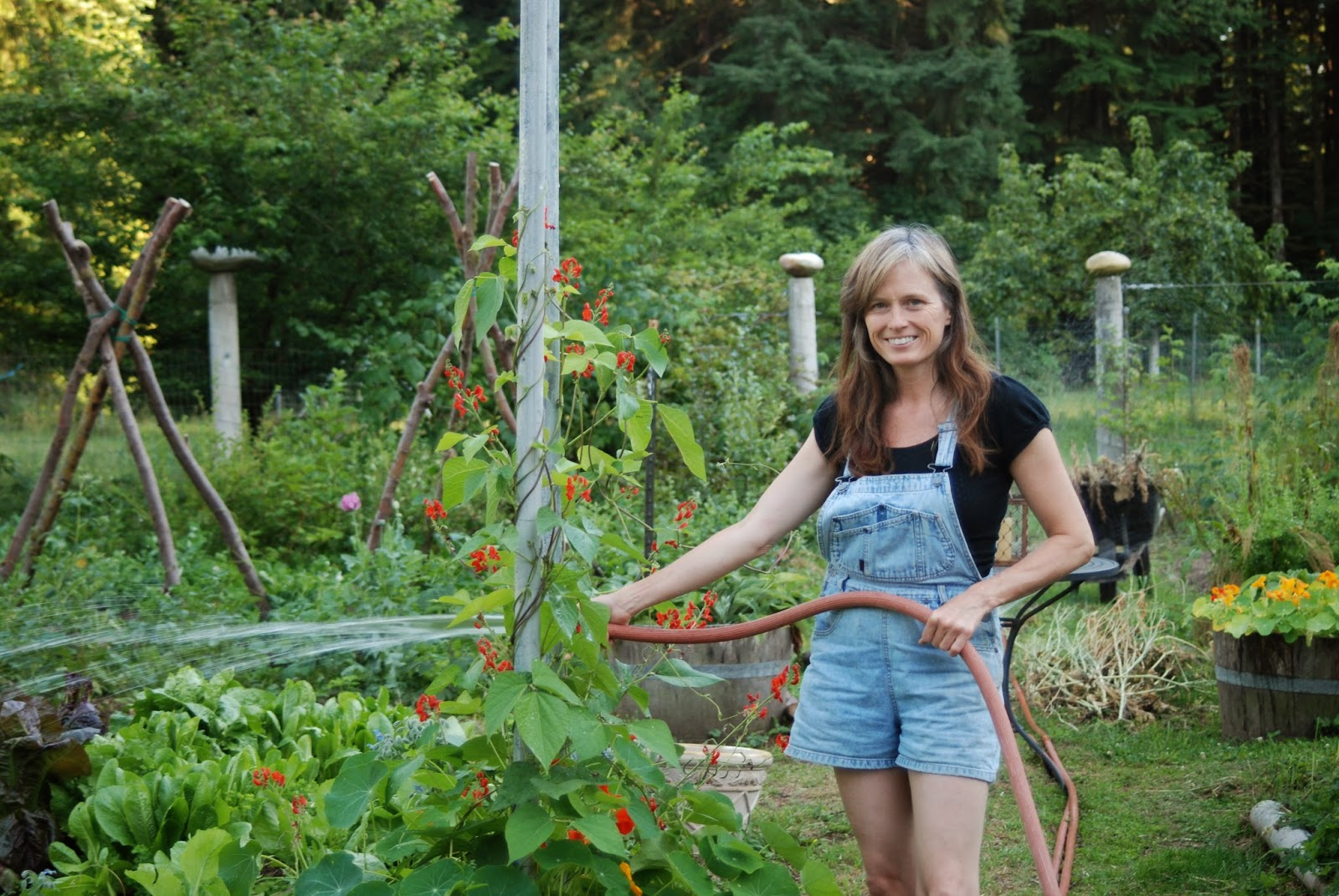 73 Craigslist Ohio Farm Garden Allentown Farm Garden By