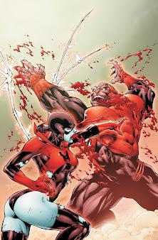 #8 DC Universe Wallpaper