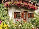 chaty ,domki