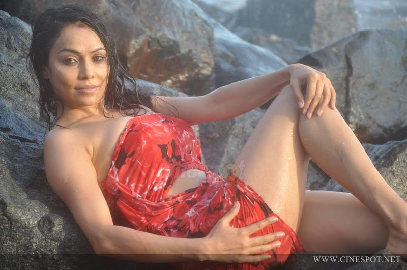 Nikita raval Actress in Swimsuit hot sexy photos pics hot photos