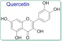 polyphenol quercetin