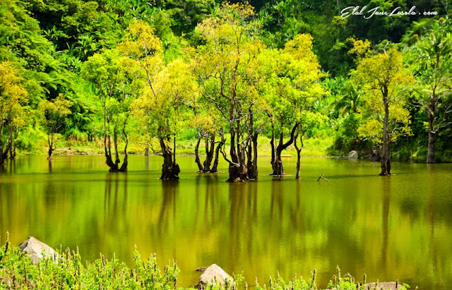 En route Twin Lakes of Balinsasayao an Danao