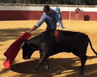 Francisco Rivera Ordonez, bikaviadal, torreádor,