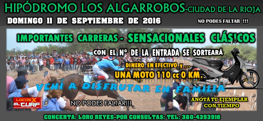 11-09-16-HIP. LOS ALGARROBOS