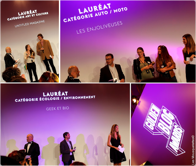 Golden Blog Awards 2015 Paris - Hôtel de Ville - Untitled Magazine, Les Enjoliveuses, Geek et Bio - Les Mousquetettes©
