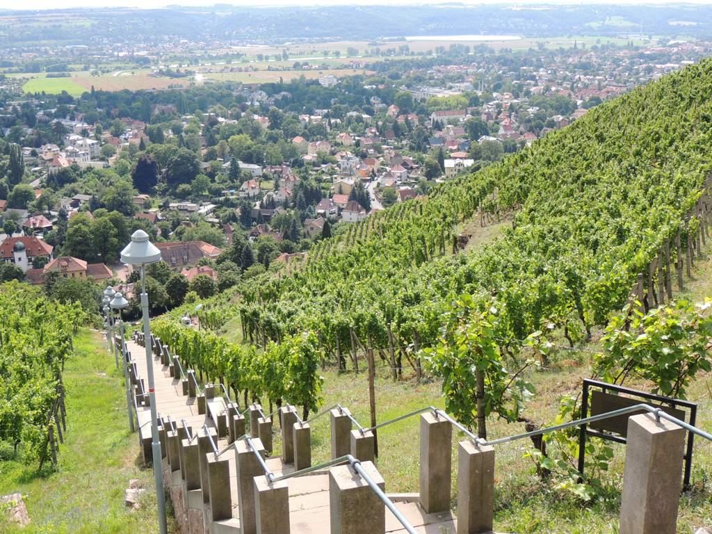 Maxity - Fotostrecken - Stadtgrün - Bild 14