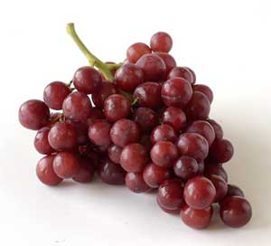 red grapes- perfect toddler snack for on the go!