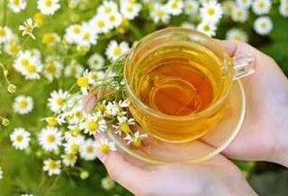 الفوائد الصحية و العلاجية لنبتة البابونج