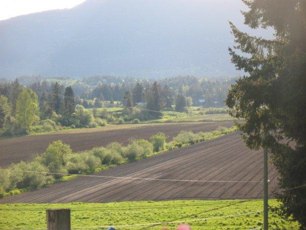 Pastula Farm