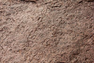 Palki Gundu inscription