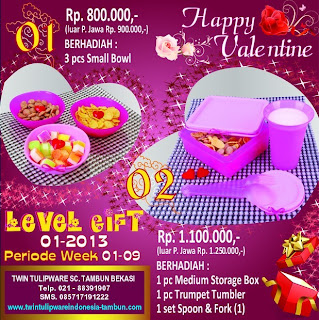 Level Gift Tulipware | Januari - Februari 2013