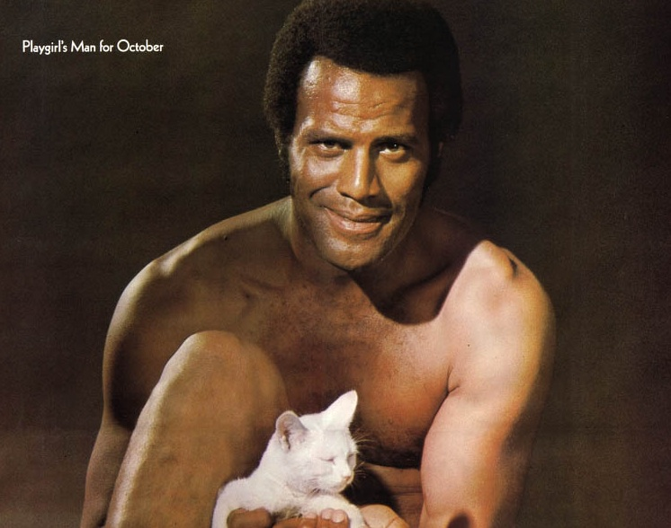 Fred Williamson: Uber-stud Williamson started out as a professional football ...