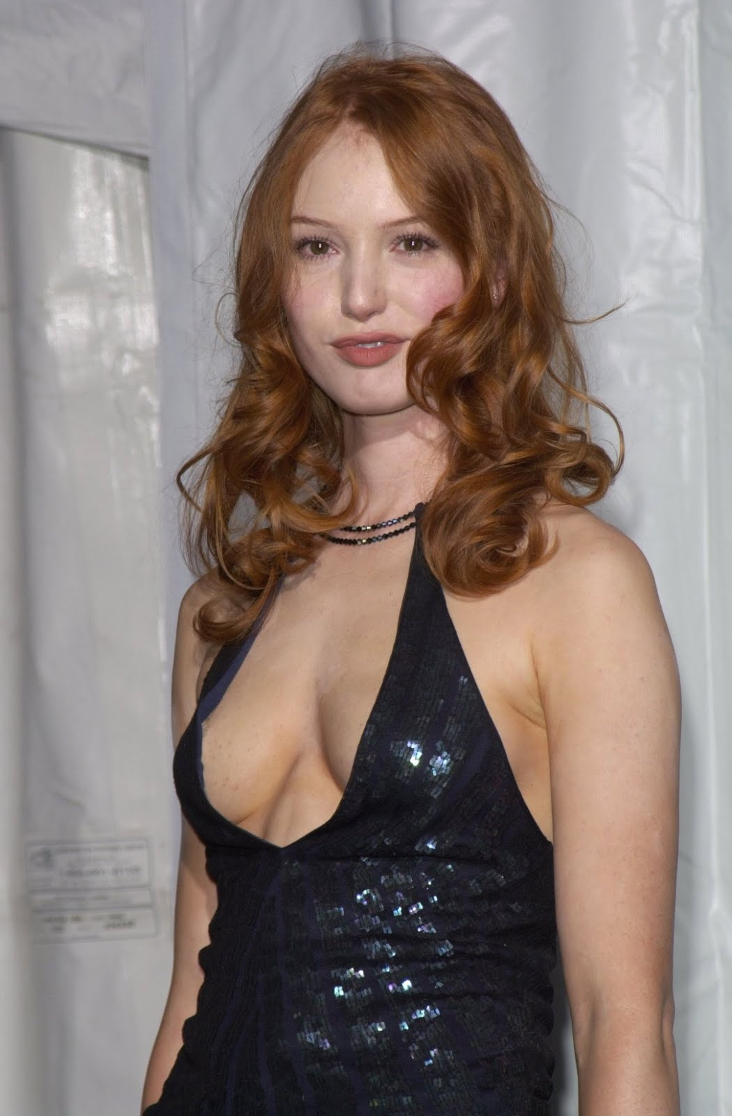 Diane Witt Hair http://bilalalisheikh.blogspot.com/2012/03/wallpapers-and-pictures-of-alicia-witt.html
