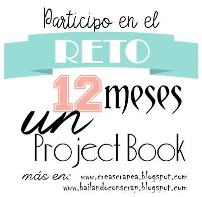 12 meses  un project book