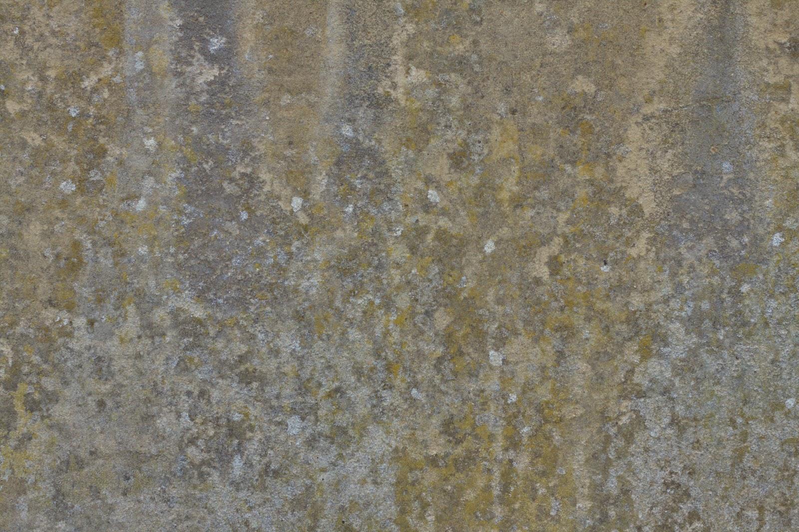 Wall plaster stucco grungy grunge moss texture 4770x3178
