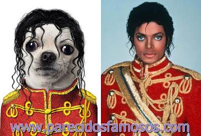Perro con Michael Jackson