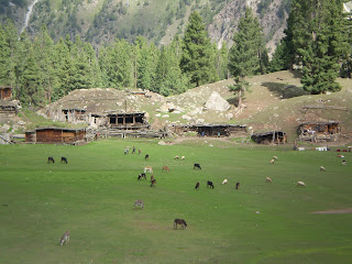 Fantori village, Fairy meadows