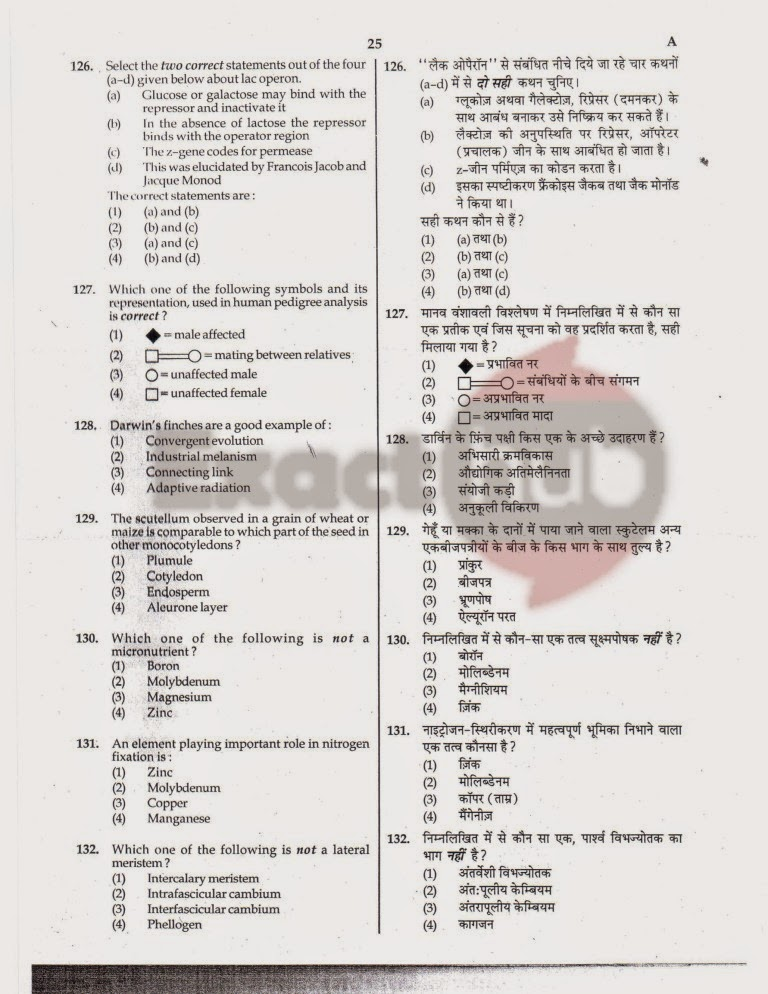 AIPMT 2010 Exam Question Paper Page 25