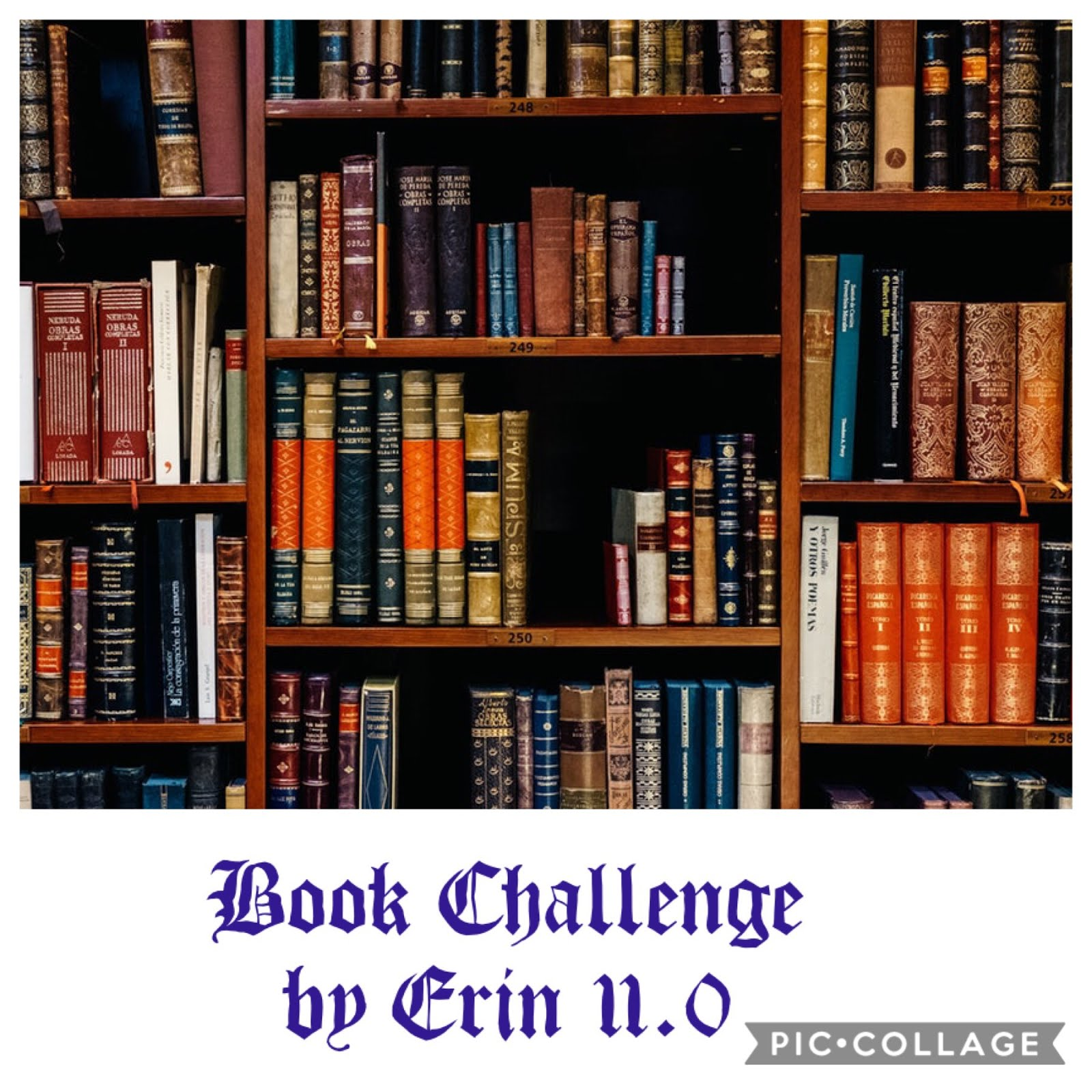 Book Challenge by Erin 11.0
